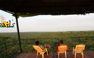 Deccan Trails 1 Day Tour Package on Weekend (Vikarabad / Ananthagiri Hills)